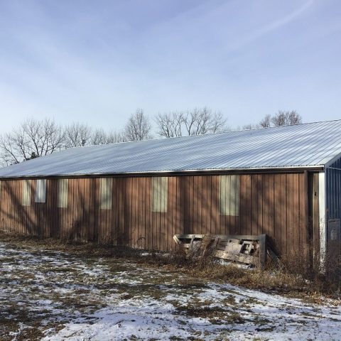 Metal roofing added to an agricultural building